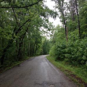 Day 11.Muddy Pond Road