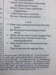 Psalm 119.11.2